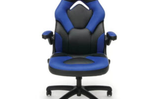 Lowndes Ergonomic Genuine Leather Gaming Chair