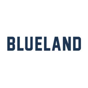 Blueland review
